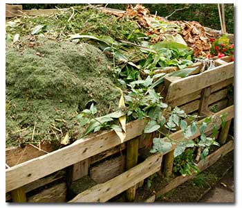 compost-pile1