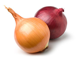onion-categories2