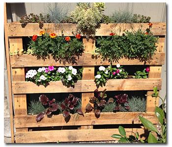 pallet-garden2