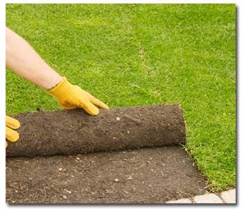 soil-prep-lawns1 (1)