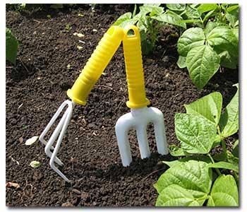 soil-prep1