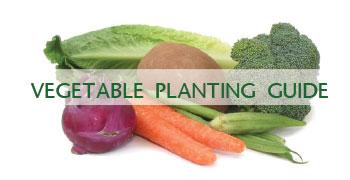 veg-plant-guide2